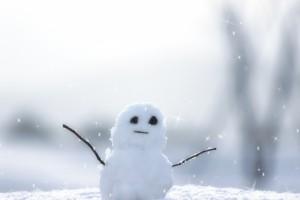 訪日客を雪遊びで集客!!見慣れない雪でつかむ印バウンド!!