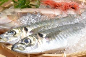 朝にとれた離島の魚を新鮮なうちに空輸で店へ!?
